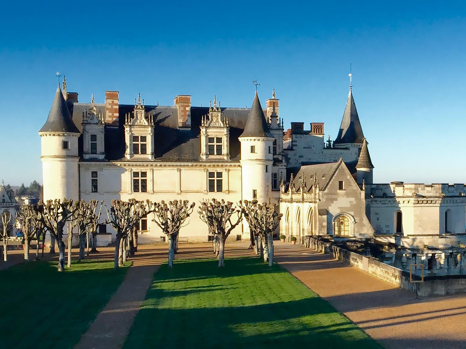 Excursion château d'Amboise